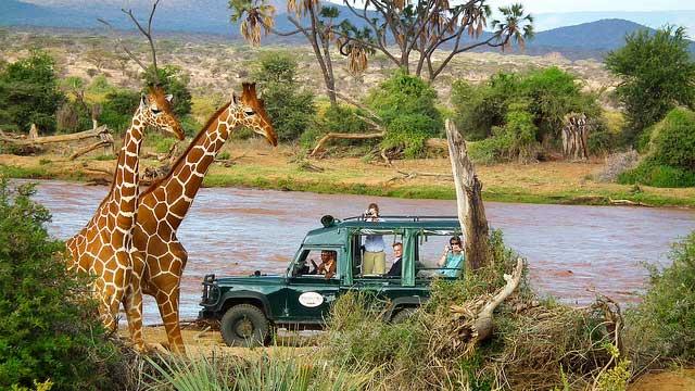 Game Drive in Samburu